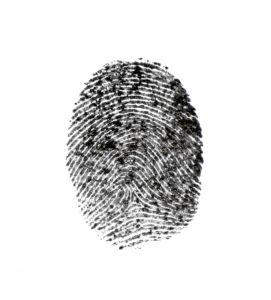 772803_crime_scene_4